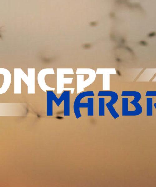 Concept Marbre Dewey